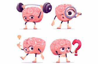 Наш мозг